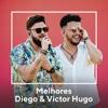 Melhores Diego Victor Hugo