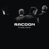 Racoon - Oceaan kunstwerk