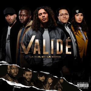 Various Artists - Validé (Bande Originale de la série)