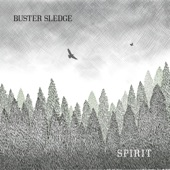 Buster Sledge - This Old House