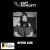 Amy Rowlett - After Life artwork