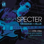 Dave Specter - Same Old Blues