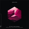 I.O.U. (feat. Emilie Brandt) [Jason Ross Extended Club Mix]