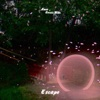 Escape (feat. Guess Who) - Single, Anoe