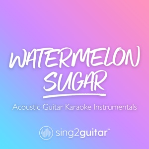 Sing2Guitar - Watermelon Sugar (Originally Performed by Harry Styles)
