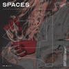 Moyka - Spaces artwork