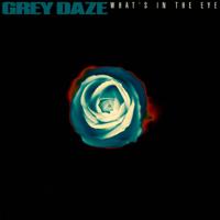 What's In The Eye-Grey Daze