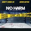 No Harm - Single, Babyy Chris 2K & Kevin Gates
