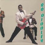 Bo Diddley - Hey! Bo Diddley