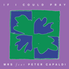 Monks Road Social - If I Could Pray. (feat. Peter Capaldi) artwork
