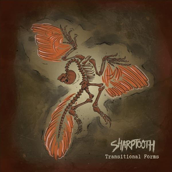 Sharptooth mit Hirudinea