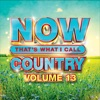 NOW That's What I Call Music Country 13, Various Artists