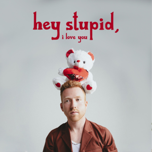 JP Saxe - Hey Stupid, I Love You