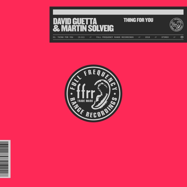 David Guetta & Martin Solveig - Thing for You (Club Mix)