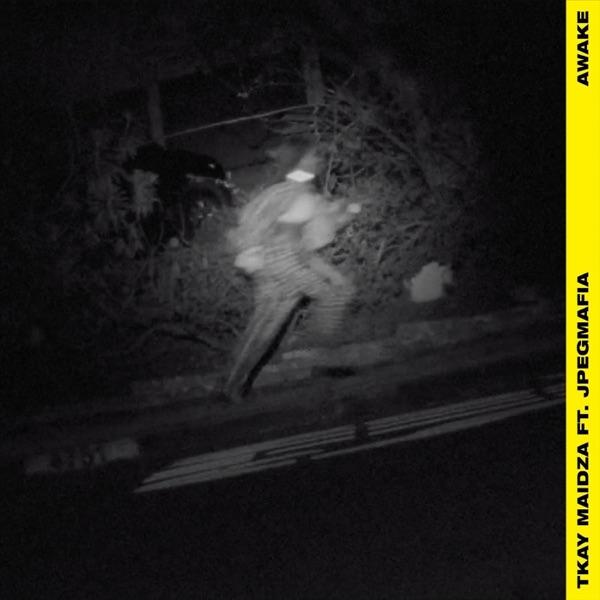 Awake (feat. JPEGMAFIA) - Single