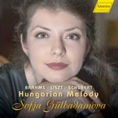 Hungarian Melody in B Minor, D. 817 artwork