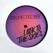 Calyx & TeeBee - Look to the Skies