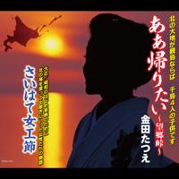 金田たつえ - ああ帰りたい 〜望郷峠〜 artwork