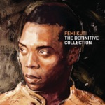 Femi Kuti - Water No Get Enemy (feat. D-Angelo & Macy Gray)