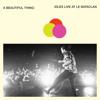 IDLES - A Beautiful Thing (IDLES Live at Le Bataclan) illustration