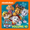 PAW Patrol, Vol. 10 - Synopsis and Reviews