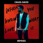 When You Know What Love Is (Remixes) - Single