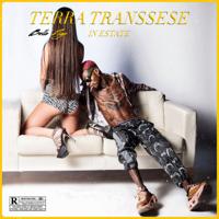 Bello Figo - Terra transsese in estate artwork
