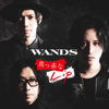 WANDS - 時の扉 ~WANDS 第5期 ver.~ アートワーク
