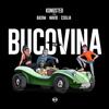 Kongsted - Bucovina (feat. Basim, Navid, Cisilia & Shantel) artwork