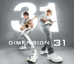 DIMENSION - 31