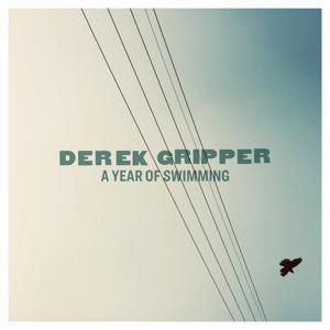 Derek Gripper - A Year of Swimming