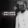 Kery James - À qui la faute (feat. Orelsan) illustration
