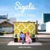 Wish You Well - Sigala & Becky Hill mp3