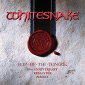 Slip of the Tongue (Deluxe Edition)