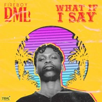 Fireboy DML - What If I Say - Single