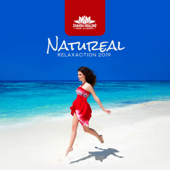Natureal Relaxaction 2019