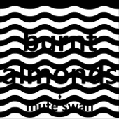 Mute Swan - Burnt Almonds