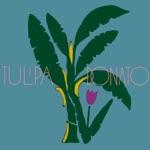 Tulipa Ruiz - Gravidade Zero