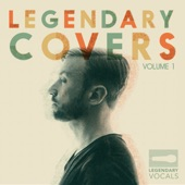 Peter Hollens - Turning Tables / Someone Like You