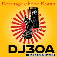 Revenge Of The Ronin - DJ30A