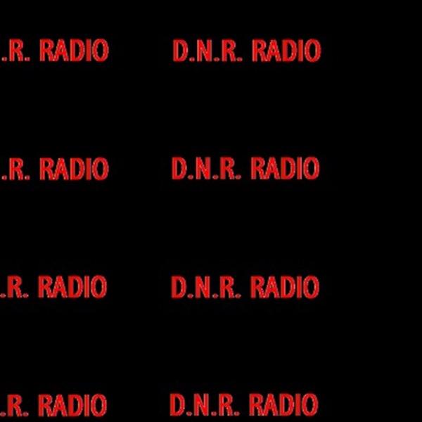 D.N.R. Radio