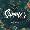 Various Artists - Summer 2019: Best of Deep House  arte
