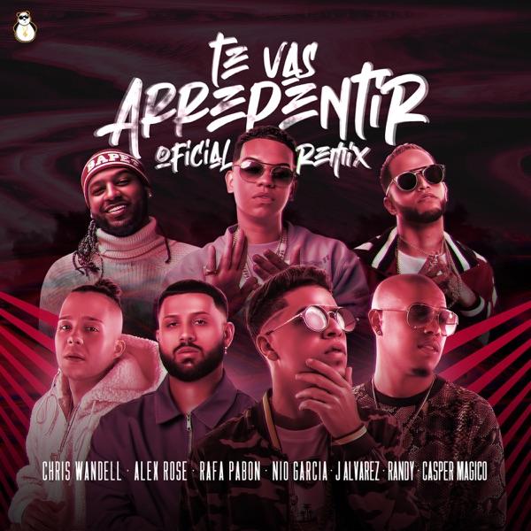 Te Vas a Arrepentir (Remix) [feat. Rafa Pabön, Alex Rose, Gasper Mágico & Nio García] - Single