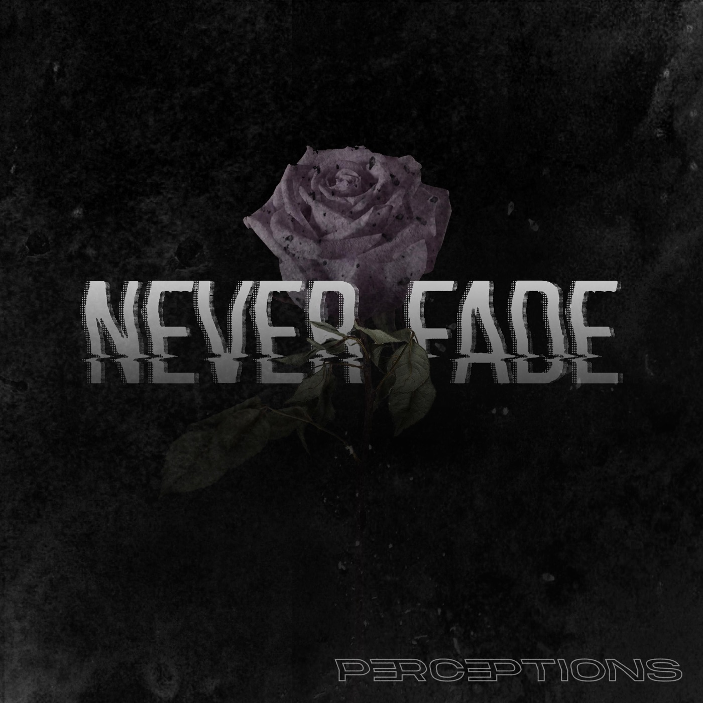Perceptions - Never Fade [single] (2019)