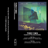 Causers Of This Instrumentals  - Toro Y Moi