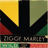 Ziggy Marley - Roads Less Traveled