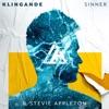 Sinner - Single
