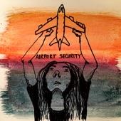 Hemming - Airport Security