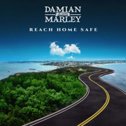 Reach Home Safe - Damian