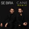 Se Bıra - Cane (Remix) artwork